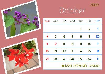 ブログ花暦