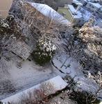 R0032955雪の朝の景色_400.jpg