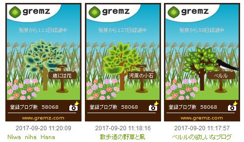 20170920秋の花3つ_500.png